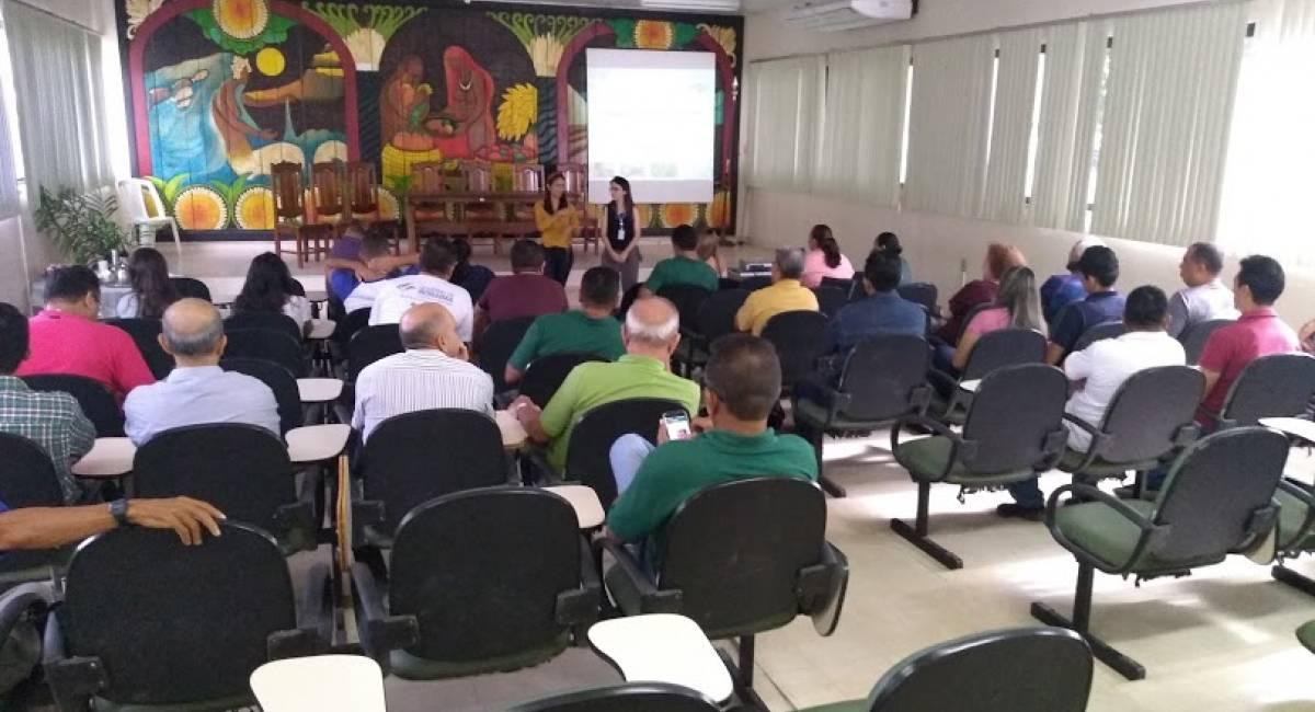 FRUTICULTURA   Embrapa capacita técnicos da Seapa sobre produção de mudas frutíferas