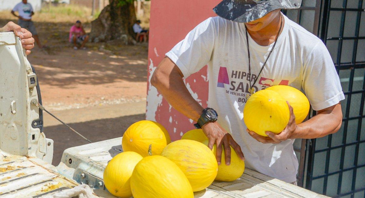 Abrigos e associações recebem doação de melão